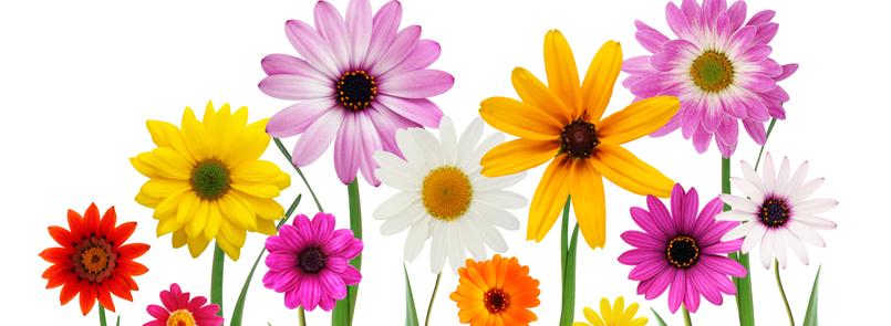 Colores que marcarán esta primavera verano